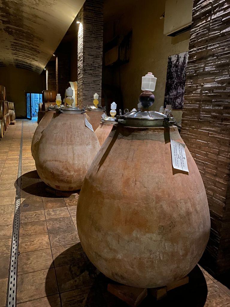 """""""Amphora Revolution"""": una innovazione per tornare alle origini. Radici antiche entrate nella lista del Patrimonio Unesco."""
