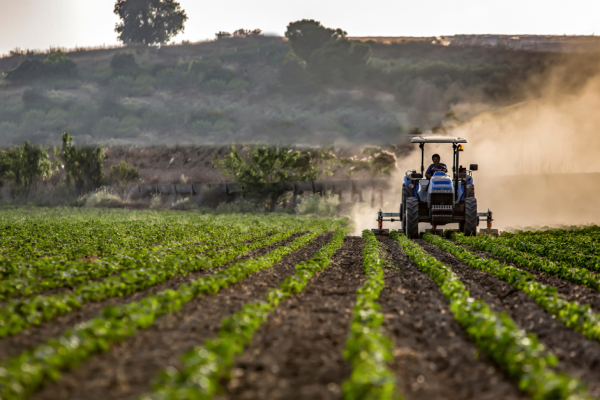 agricoltura Lazio
